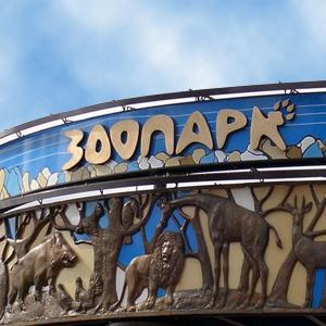 Зоопарки Ашитково